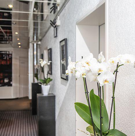 Zahnärzte Datteln - Weisse Orchidee - Praxis